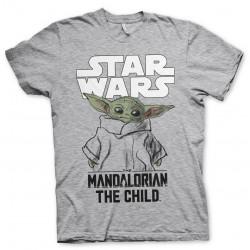 The Mandalorian - The Child...
